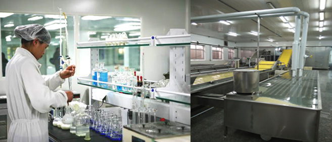 The laboratory and workshop